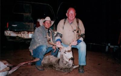 Wyoming Deer 2