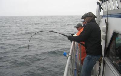 Alaska Fishing 7